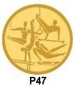 gym-pa47